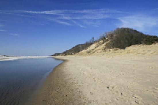 Sherwood Forest Bed and Breakfast: The Beach in Douglas, MI