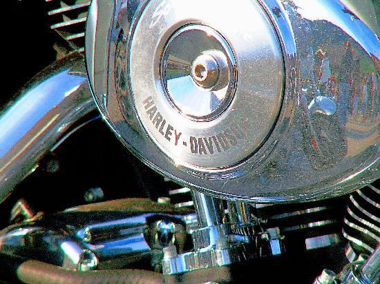 Entre Deux Eaux: Harley Davidson Rally