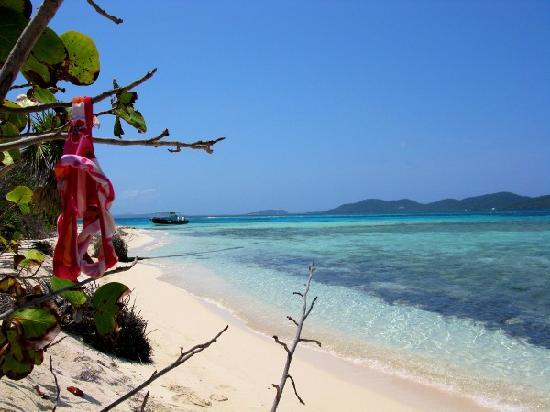 Paya Bay Resort : Bikini Tree at the cay