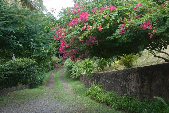 Beau Rive : Grounds