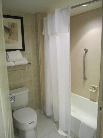 Homewood Suites by Hilton London Ontario: Bathroom