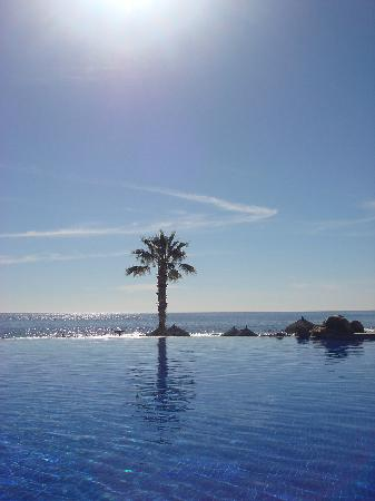 Grand Fiesta Americana Los Cabos All Inclusive Golf & Spa : The infinity pool