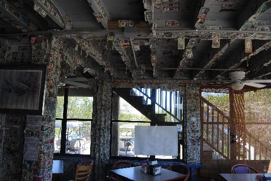 Barnacle Restaurant: barnacle phil's