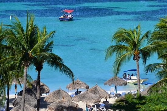 Aruba: view from the marriott