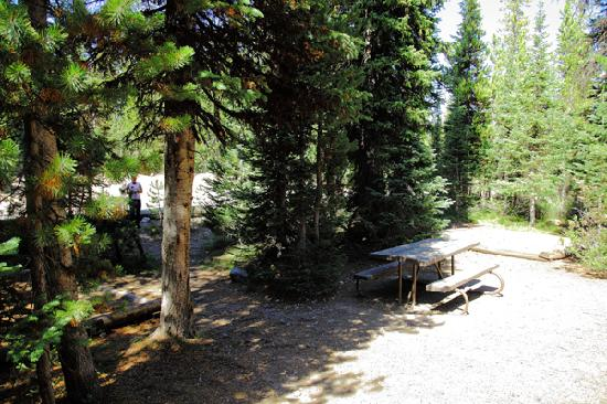 Indian Creek Campground: camp site