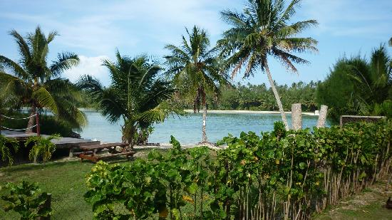 Manea Beach Villas: Our view from room (#5)