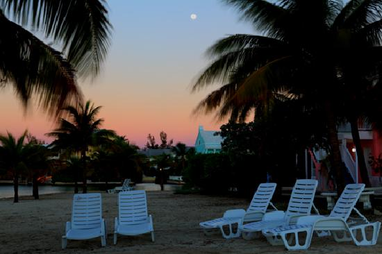Sandyport Beaches Resort: Sandyport Grounds 4