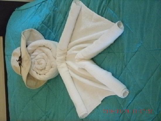 ซานทานา บีช รีสอร์ท: The Cleaners Towel Art