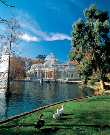 attraction review reviews snail travel private tours madrid