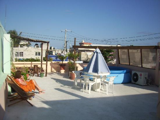 Zina's Guest House : Zina' rooftop