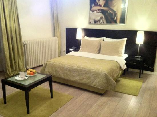 Mercure Belgrade Excelsior: Room 501