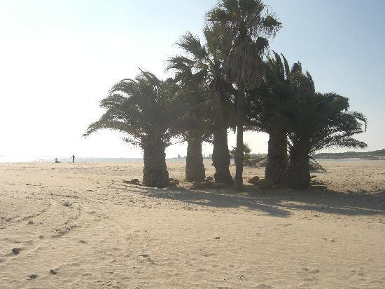 Monasterio De San Miguel Hotel : Strand von El Puerto de Santa Maria