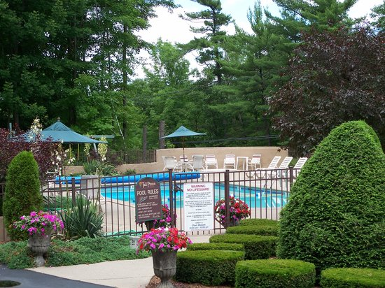 Tall Pines Motel: Pool Area