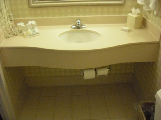 Hilton Garden Inn Allentown West: Bathroom vanity