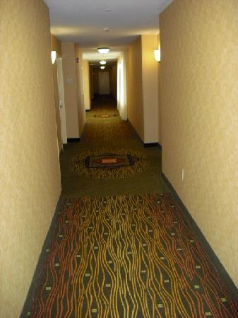 Hilton Garden Inn Allentown West: Hallway