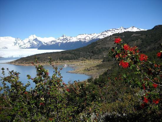 El Calafate, Argentina: O glaciar