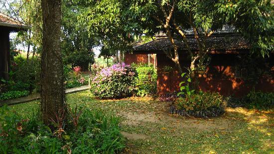 Romyen Garden Resort: View from my porch