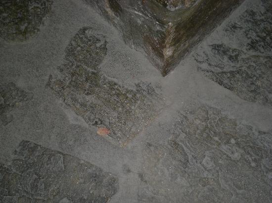 Porto Paros Hotel & Villas: Pavimento in camera sporco