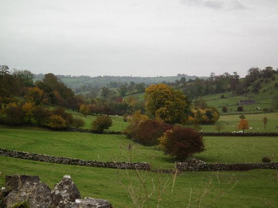 Uppermoor Farmhouse and Holiday Cottages: View