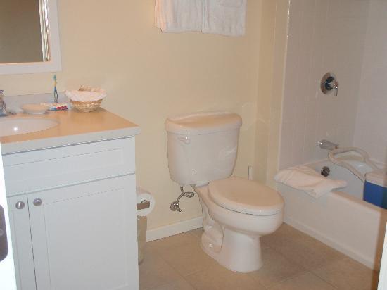 جاكسون جور إن: Bathroom was a nice size considering the size of the room.