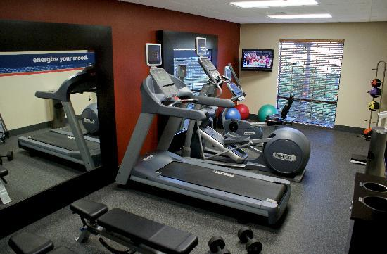 Hampton Inn & Suites Camarillo: Fitness Room