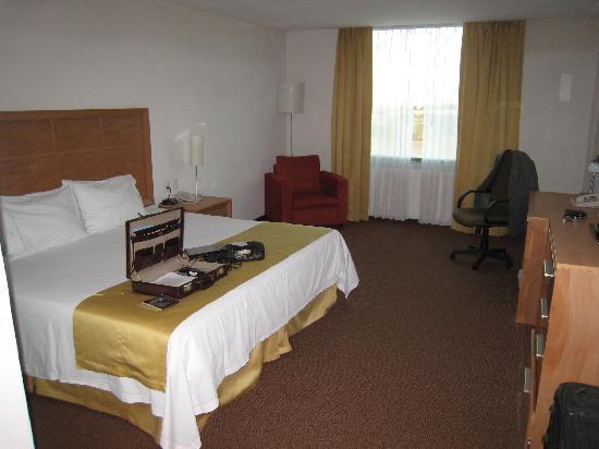 Holiday Inn Express Hotel & Suites Irapuato: Recamara