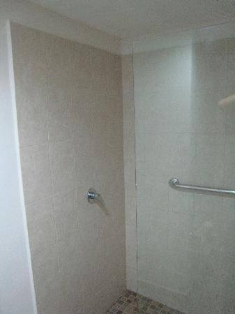 Holiday Inn Express Hotel & Suites Irapuato: Baño