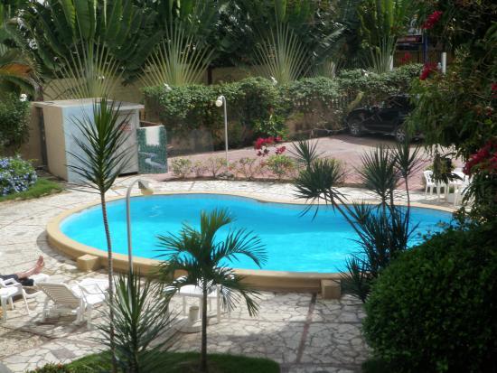 Hotel mango: Pool