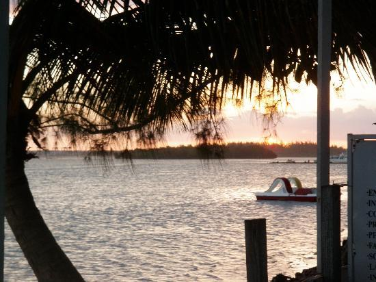 Hotel mango: view from the Boathouse down the street from Mangos