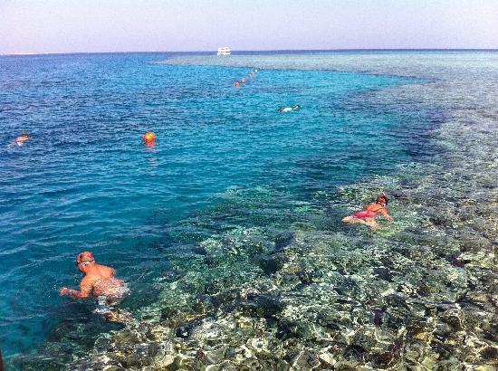 Stella Di Mare Beach Resort In Makadi Bay