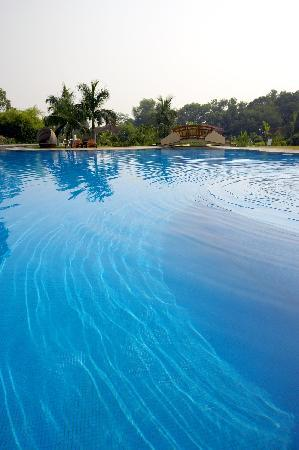 Westin Sohna Resort and Spa : Pool-Westin Sohna Resort Spa