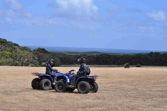 Southern Ocean Lodge: The lodge has ATV's for guided touring