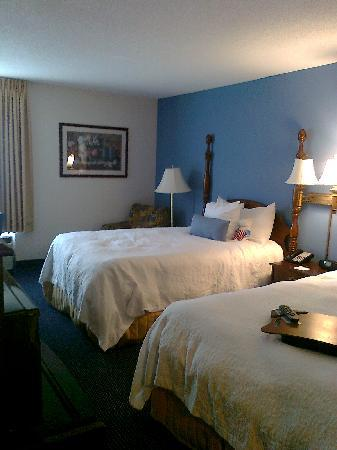 Hampton Inn and Suites Raleigh/Cary-I-40 (PNC Arena): Standard double room
