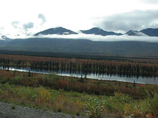 Denali National Park and Preserve, AK: Along Park Hwy going to Denali
