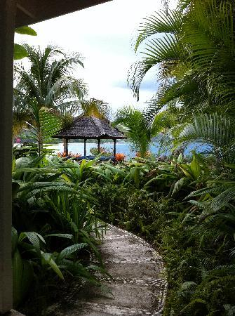 Round Hill Hotel & Villas: Path on the way from one of the downstairs rooms leading to the pool and beach