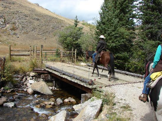 Paradise Guest Ranch: Crossing The Creek