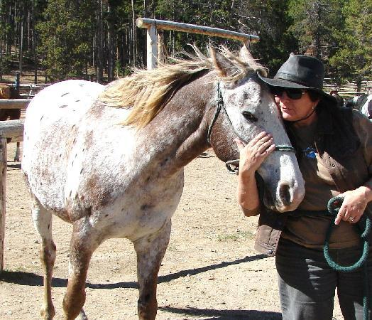 Paradise Guest Ranch: I love my horse!!!