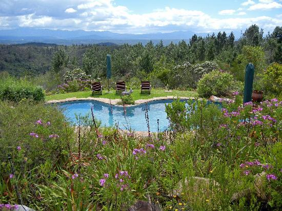 Fynbos Ridge Country House & Cottages: The pool... what a view!