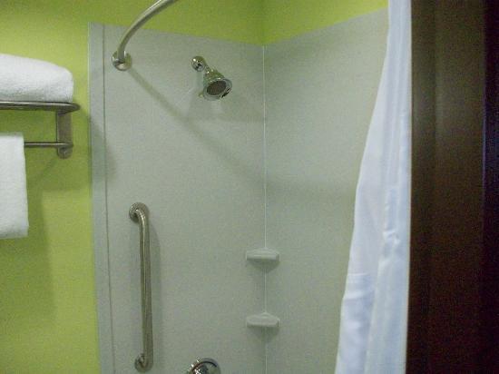 Holiday Inn Garland: shower