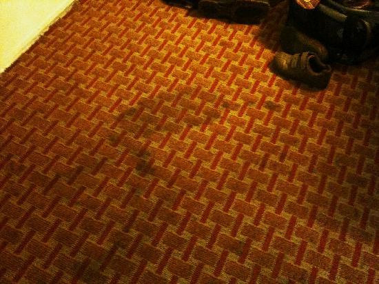 Econo Lodge Mayport: dirty stained damp carpet