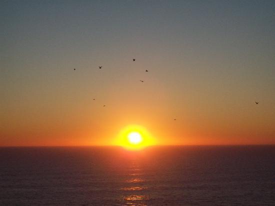Hotel Riu Emerald Bay: Sunset