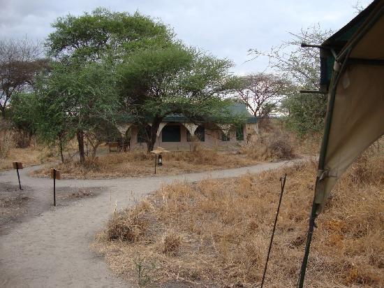 Kirurumu Tarangire Lodge: In the camp