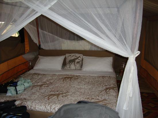 Kirurumu Tarangire Lodge: Inside the tent