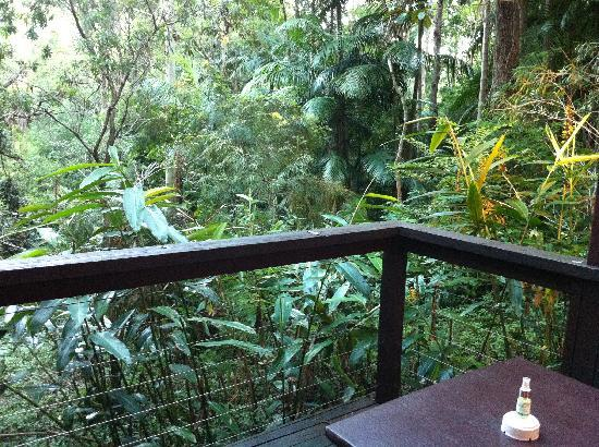 Songbirds Rainforest Retreat: Balcony looking over the rainforest