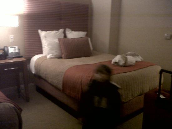 Mount Airy Casino Resort: room
