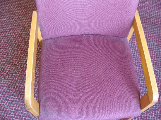 Red Carpet Inn Syracuse Airport: Dust and hair on chair.