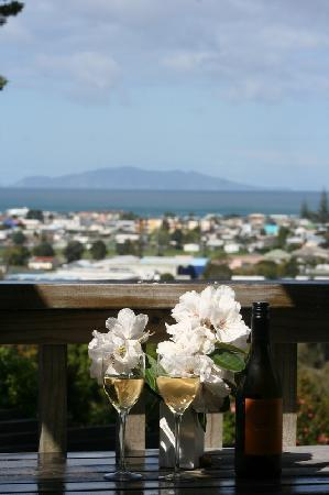 Brenton Lodge: the view from the garden suite