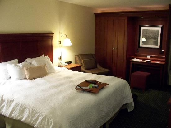 Hampton Inn Charleston - Downtown: King room