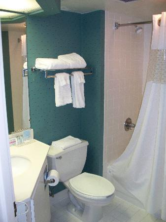 Hampton Inn Charleston - Downtown: Bath