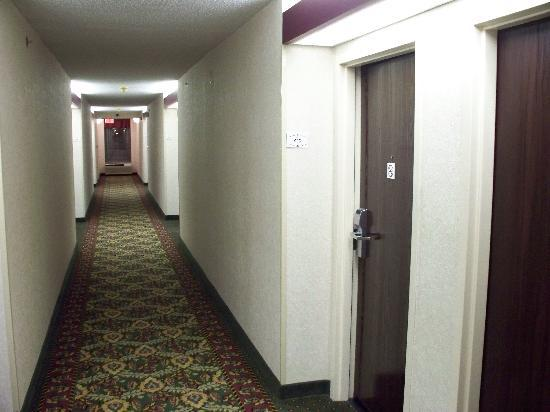 Hampton Inn Charleston - Downtown: Hallway
